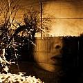 Innocents Reflection  by Jessica Shelton