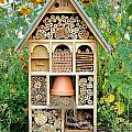 Insect Hotel by Olivier Le Queinec