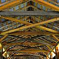 Inside A Covered Bridge 3 by Tana Reiff