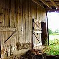 Inside An Indiana Barn by Julie Dant
