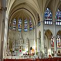 Inside The Cathedral Basilica Of The Immaculate Conception 1 by Angelina Vick