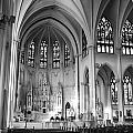 Inside The Cathedral Basilica Of The Immaculate Conception 1 Bw by Angelina Vick