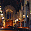 Inside The Cathedral by Lynn Bauer