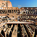 Inside The Colosseum by Weston Westmoreland
