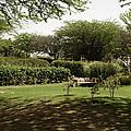 Inside The Garden Of 5 Senses In Delhi by Ashish Agarwal