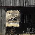 Barn - Kentucky - Inside Treasure by Jan Dappen
