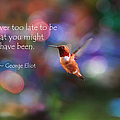 Inspirational Hummingbird by Peggy Collins