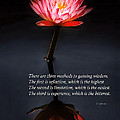 Inspirational - Reflection - Confucius by Mike Savad
