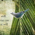 Inspirational Small Bird by Peggy Collins