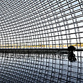 Interior Of The National Grand Theatre - Beijing China by Brendan Reals
