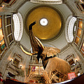Interiors Of A Museum, National Museum by Panoramic Images