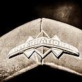 International Grille Emblem -0741s by Jill Reger
