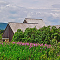 Interpretive Center In Forillon Np-qc by Ruth Hager