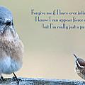 Intimidation by Bonnie Barry