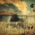 Into Deep Sleep by Taylan Apukovska