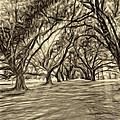 Into The Deep South - Paint 2 Sepia by Steve Harrington