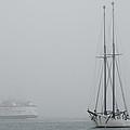 Into The Fog by Steve Myrick