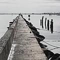 Into The Gulf by Robert Bermea