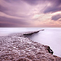 Into The Ocean by Jorge Maia