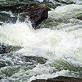 Into The Rapids by Aimee L Maher ALM GALLERY