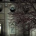 Intricate Lights by David Andersen