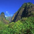 Io Needle And Valley Maui Hawaii by John Burk