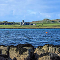 Iona Abbey Isle Of Iona by Chris Thaxter