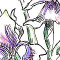 iPhone-Case-Flowers-Iris2 by Gordon Punt