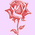 iPhone-Cases-Rose-3 by Gordon Punt