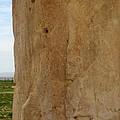 Iran Cyrus The Great by Lois Ivancin Tavaf