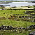 Ireland Farm by Sharon M Connolly