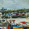 Ireland's Dingle Harbor by Terry Rowe