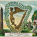 Irelands Historical Emblems by Bill Cannon