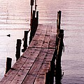 Irene's Dock by Susan Crossman Buscho