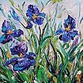 Iris Garden by Karen Tarlton