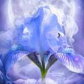 Iris - Goddess In The Moonlite by Carol Cavalaris