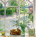 Irises And Sleeping Cat by Timothy Easton