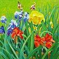 Irises On The West Lawn 1 by Dai Wynn