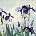 Irises Purple Flowers Painting Floral K. Joann Russell                                           by K Joann Russell