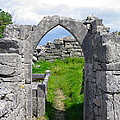 Irish Church Ruins by Denise Mazzocco