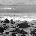 Irish Coast by Tiffany Erdman