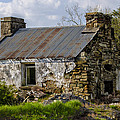 Irish Cottage Ruins by Bill Cannon