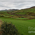Irish Countryside Hdr by Benjamin Reed