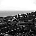 Irish Farm I - The Real Survivors by Patricia Griffin Brett