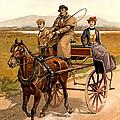 Irish Jaunting Car by Detroit Publishing Co