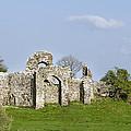 Irish Ruins by Bill Cannon