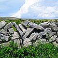 Irish Stone Wall by Denise Mazzocco