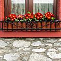 Irish Window by Luis Alvarenga
