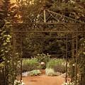 Iron Entrance by Jessica Jenney