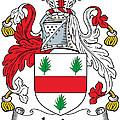 Irvine Coat Of Arms Irish by Heraldry